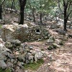 A good walk; former charcoal burner in the oak woods