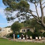 Wine tasting in the garden of Son Palou