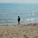 Sunny Beaches!!