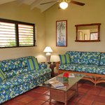 Comfortable couches and a sofa bed in each villa
