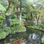 Tropical Garden in Funchal