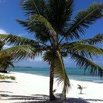 Splendida spiaggia e mare da sogno
