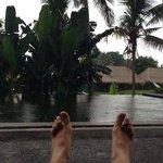 Piscina, villa y arrozal