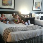 They love the room! It's so BEAUTIFUL!
