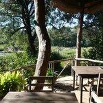 Restaurant/ Lounge