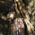 The fairy tree in the gardens