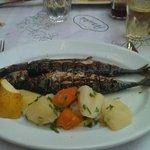 Ecco il pesce fresco del paese