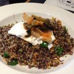 Sorry the Quinoa came our blurry