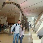 Royal Ontario Museum, Toronto, CA