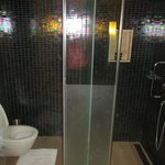 Showing the separate commode and shower