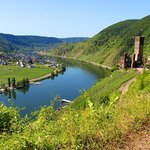 Overlooking the Mosel River and the ruins of Beilstein Castle