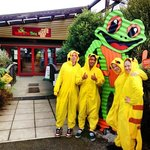 Team Pikachu stops in at the Frog during their roadtrip
