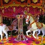 Floral Carousel in Wynn Hotel