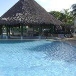 Swim-up bar