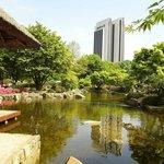 Hotelansicht vom Japanischen Garten (Planten und Blomen) aus