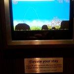 Il videogioco in ascensore