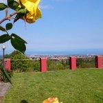 Photo of La Moresca
