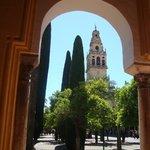 дворик мечети
