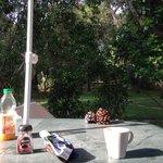 Il patio a colazione.