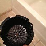 Disgusting coffee pot!