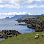coast road, ireland at it's beautiful best