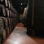 Uma visita e vinhos do Porto