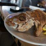 Full Fried Fish