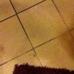Filthy floors