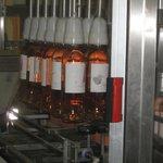 Bottling at Chateau de Rouet