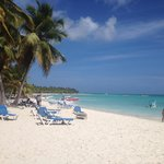 Saona island excursion