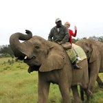 Sur mon éléphante Keisha