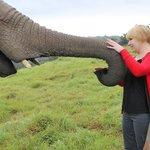 Avec mon éléphante Keisha