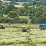View of farming in June from Fairways Bed and Breakfast B&B in Crewkerne in Somerset