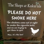 Ha .. Spare the chickens, they addicts ...