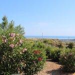 Blick in Richtung Mittelmeer