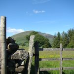 Close to the stone circle ...