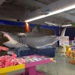Myrtle beach shop's shark