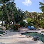 A nice pool area ♥