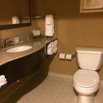 Simple but clean bathroom in 2 queen suite with pullout couch