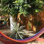 Lots of hammocks to relax in.