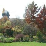 Zdjęcie Cedarberg Guest Farm