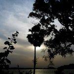 Near Kandalama Lake