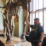 Δυνόσαυροι και μαμούθ!