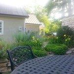 Teresa,'s Garden