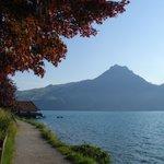 Wandelpad langs het meer.