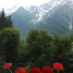 uitzicht op de Mont Blanc.
