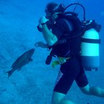 Diving by Xanthos travel