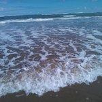 Clear water at Cayton Bay