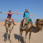 quad bike trip with camels