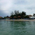 Beach and Beach bar